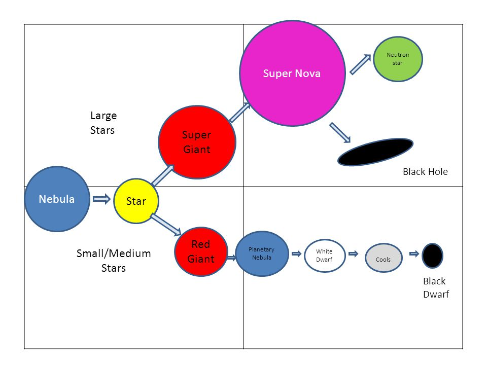 star\u0027s life cycle goal create a diagram to help you understand this