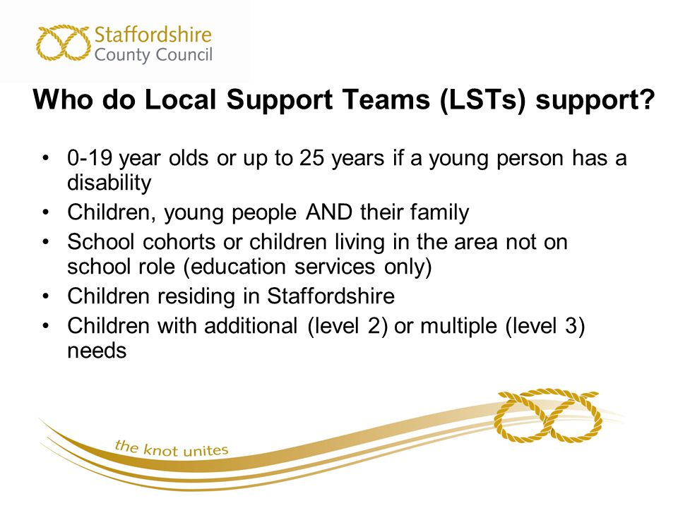 Who do Local Support Teams (LSTs) support.