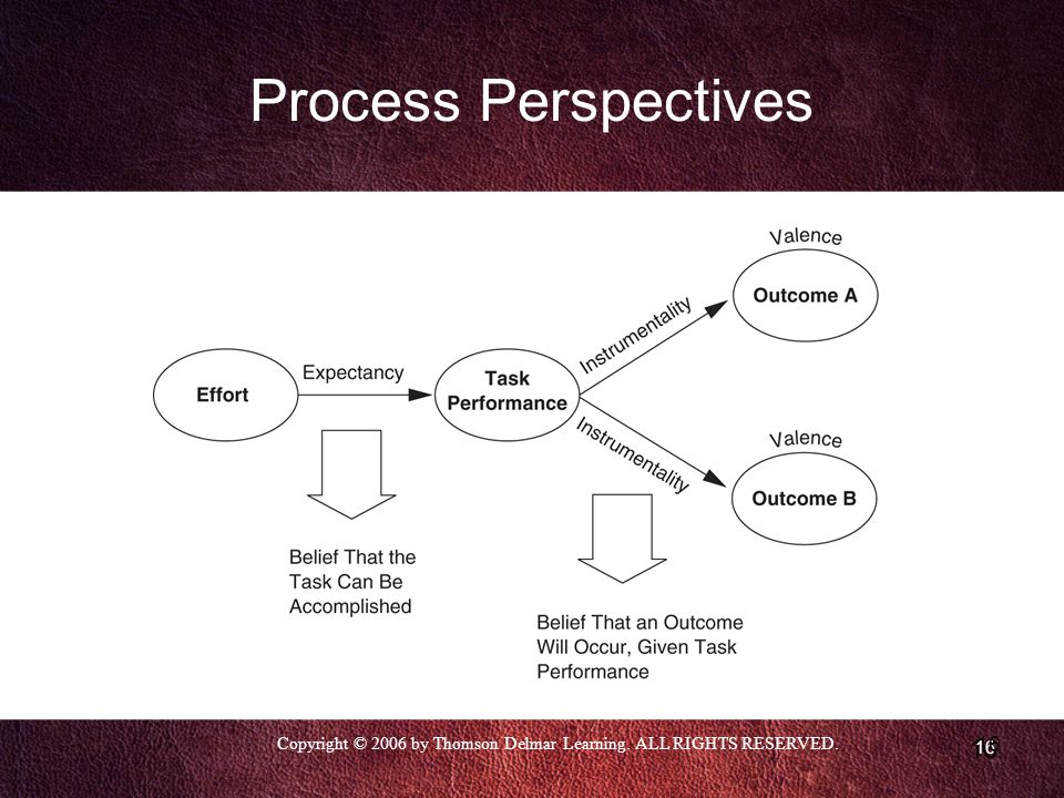 Copyright © 2006 by Thomson Delmar Learning. ALL RIGHTS RESERVED. 16 Process Perspectives
