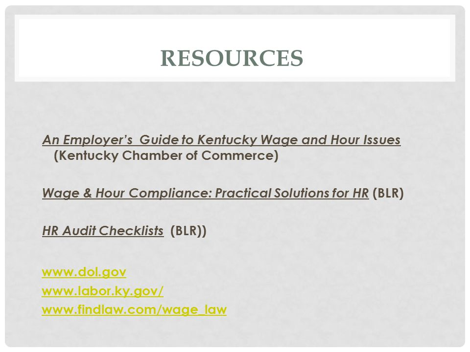 RESOURCES An Employer's Guide to Kentucky Wage and Hour Issues (Kentucky Chamber of Commerce) Wage & Hour Compliance: Practical Solutions for HR (BLR) HR Audit Checklists (BLR))