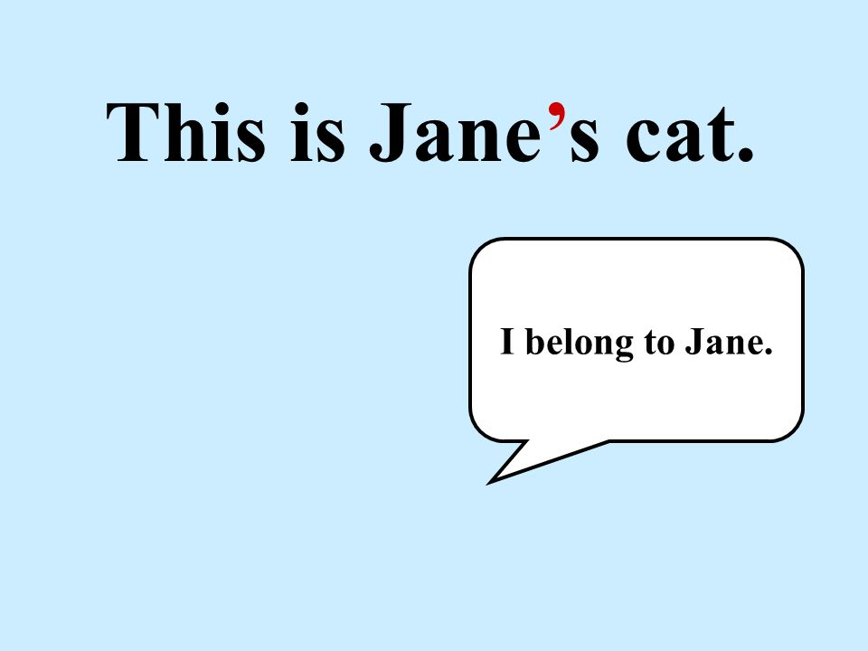 This is Jane's cat. I belong to Jane.