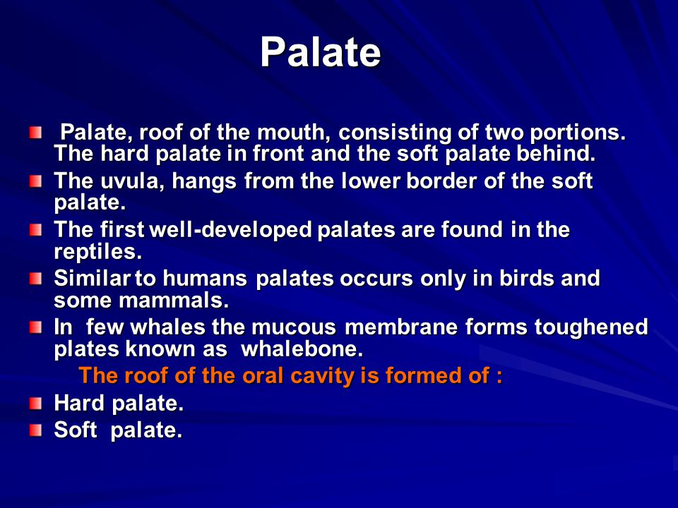 Palate Palate, roof of the mouth, consisting of two portions