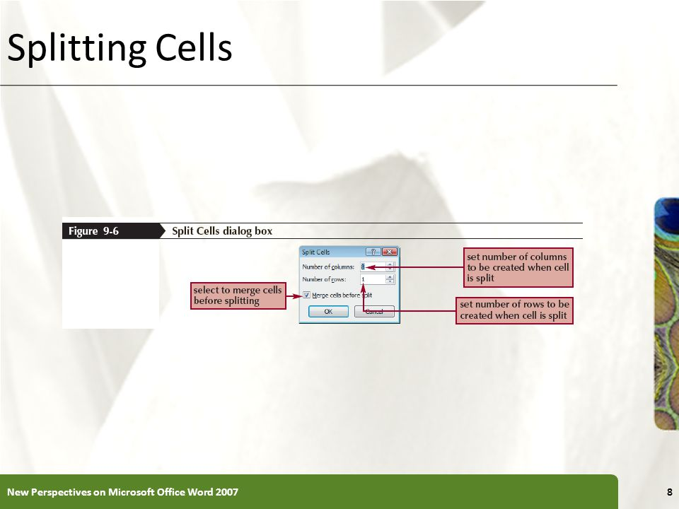 XP Splitting Cells New Perspectives on Microsoft Office Word 20078