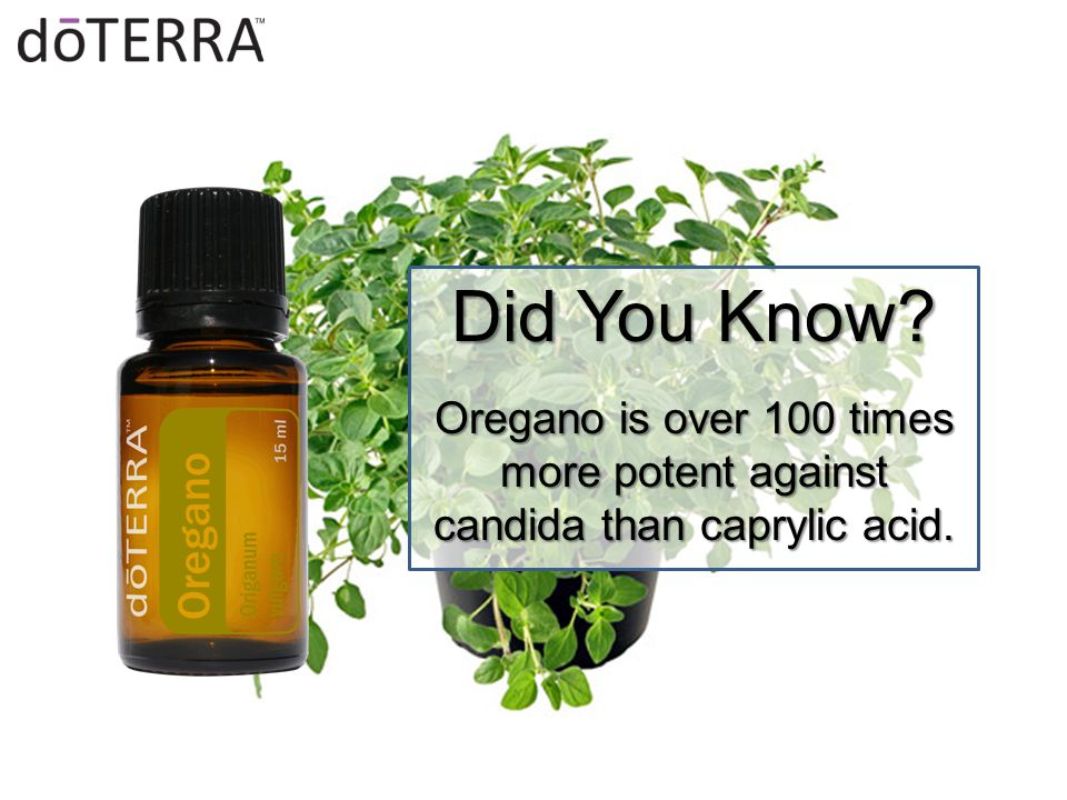 Did You Know Oregano is over 100 times more potent against candida than caprylic acid.