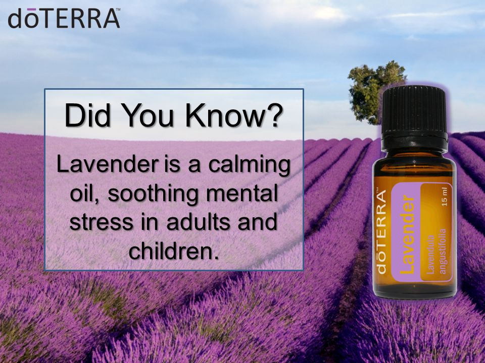Did You Know Lavender is a calming oil, soothing mental stress in adults and children.