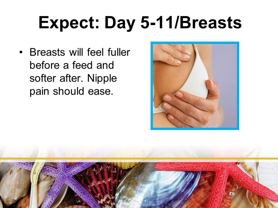 Expect: Day 5-11/Breasts Breasts will feel fuller before a feed and softer after.