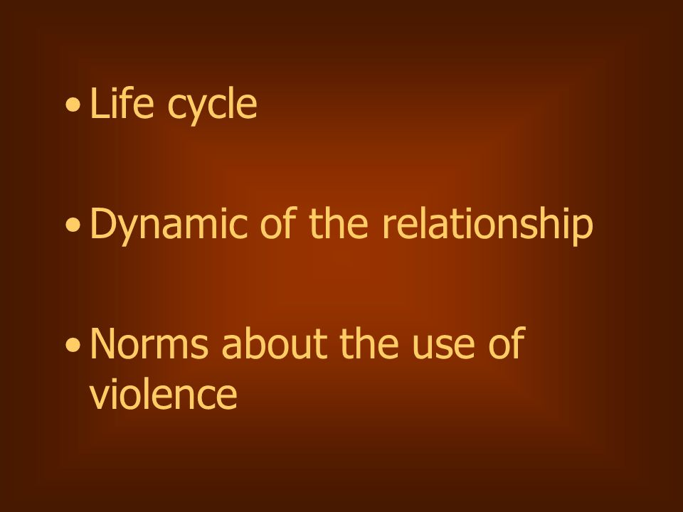 Life cycle Dynamic of the relationship Norms about the use of violence