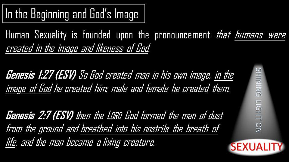 Created god human sexuality