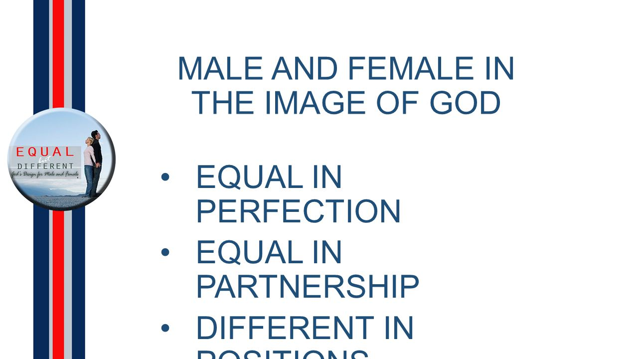 MALE AND FEMALE IN THE IMAGE OF GOD EQUAL IN PERFECTION EQUAL IN PARTNERSHIP DIFFERENT IN POSITIONS