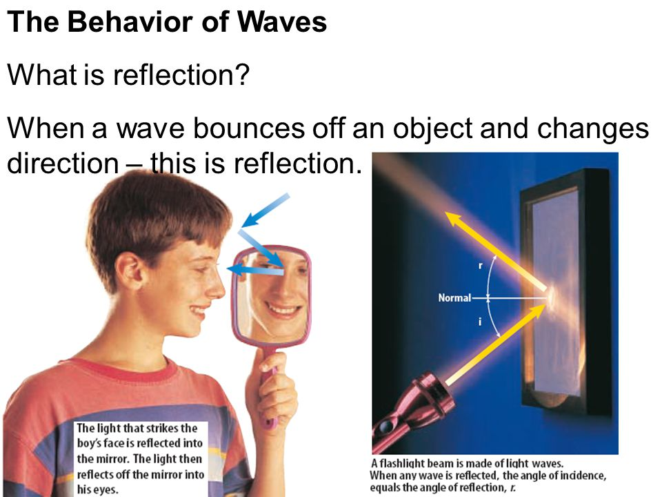 The Behavior of Waves What is reflection.