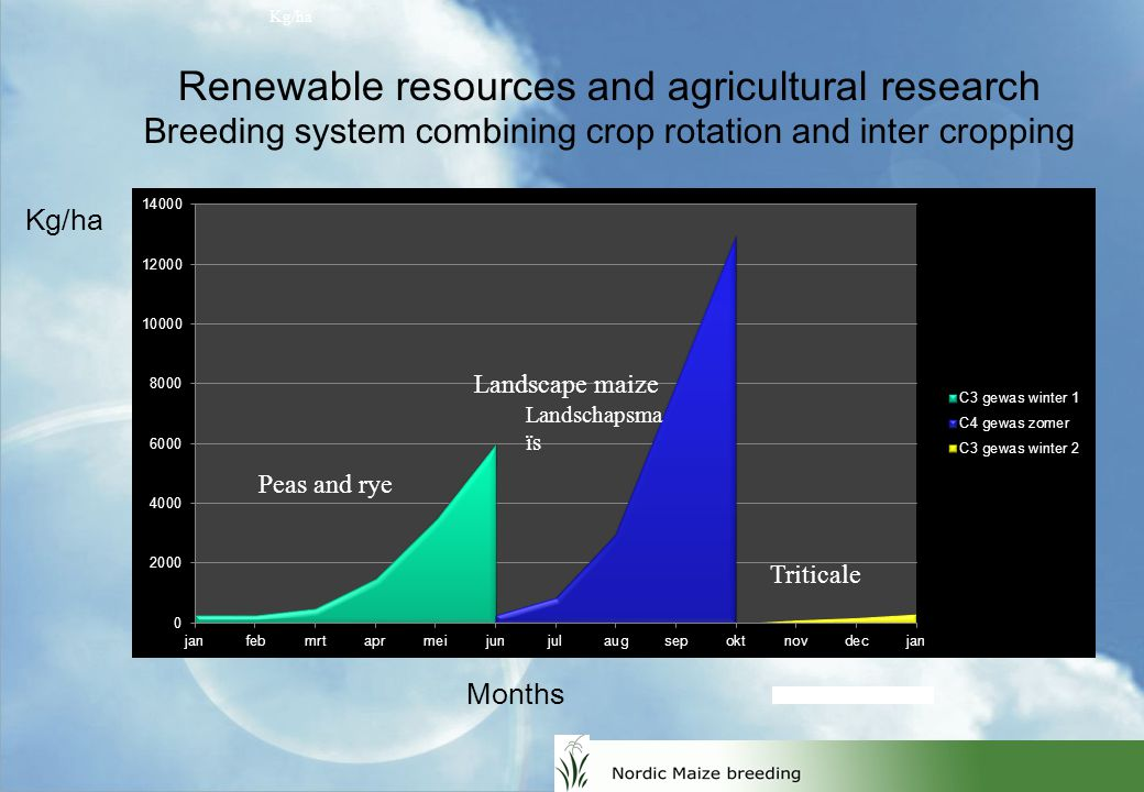 Kg/ha Renewable resources and agricultural research Breeding system combining crop rotation and inter cropping Peas and rye Triticale Kg/ha Landscape maize Months