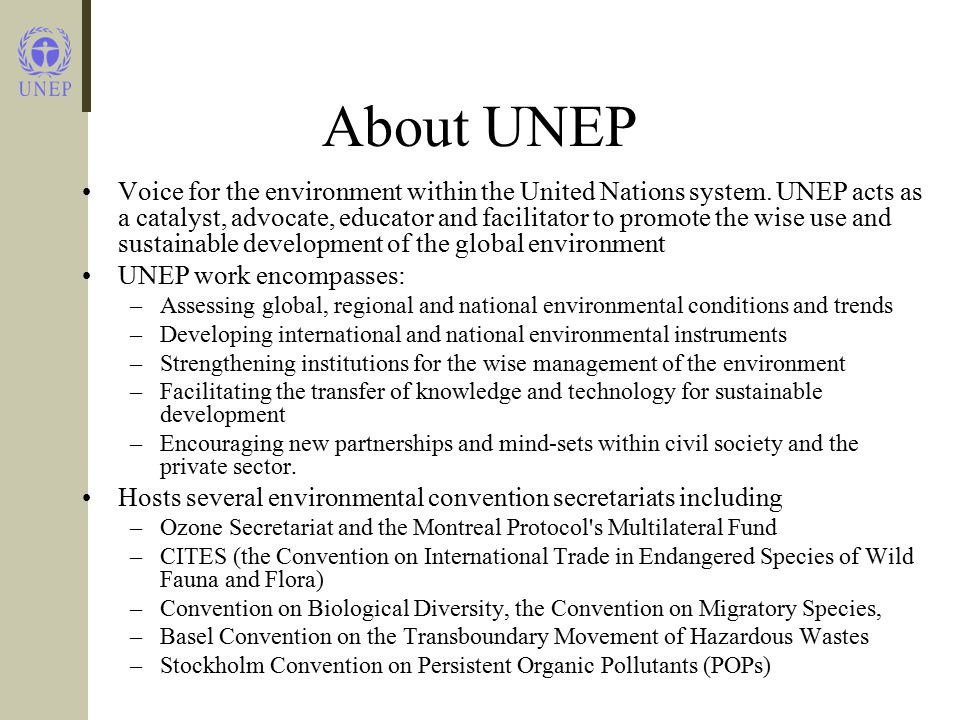 About UNEP Voice for the environment within the United Nations system.