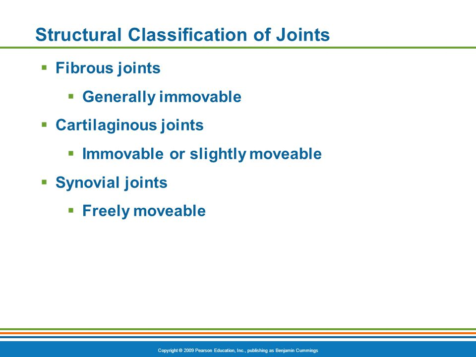 Copyright © 2009 Pearson Education, Inc., publishing as Benjamin Cummings Structural Classification of Joints  Fibrous joints  Generally immovable  Cartilaginous joints  Immovable or slightly moveable  Synovial joints  Freely moveable