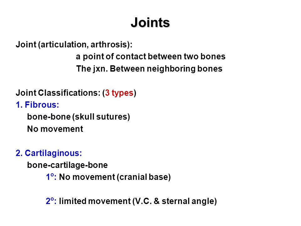 Joints Joint (articulation, arthrosis): a point of contact between two bones The jxn.