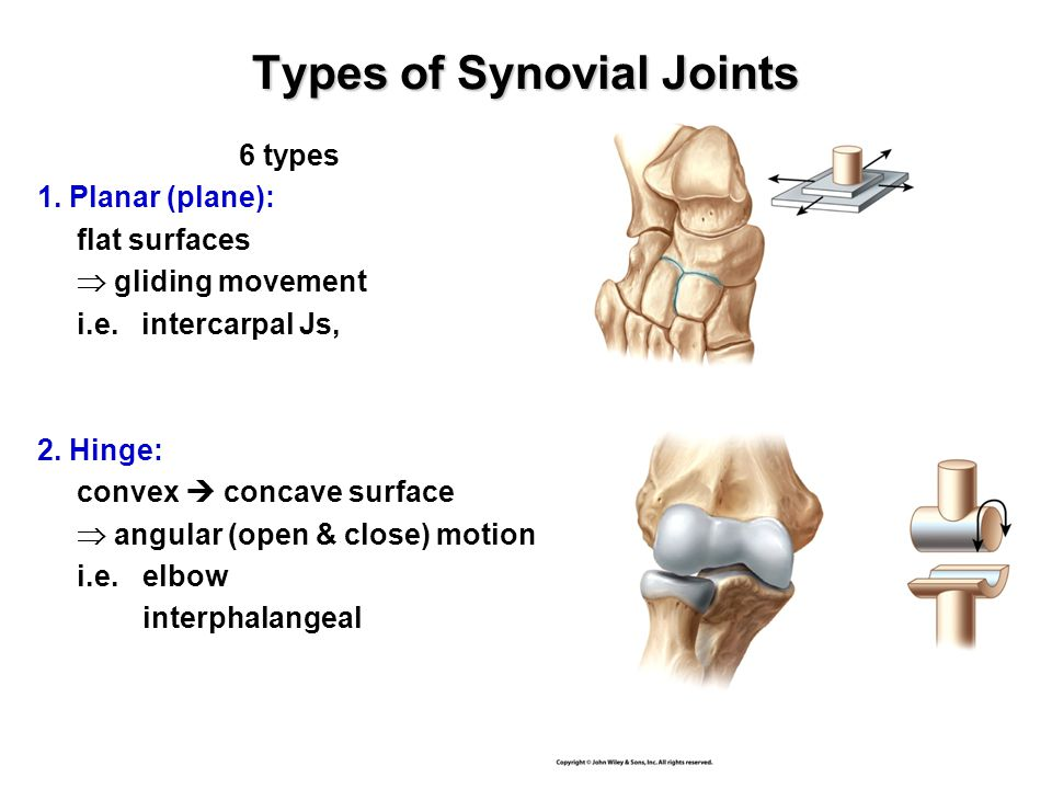 Types of Synovial Joints 6 types 1. Planar (plane): flat surfaces  gliding movement i.e.