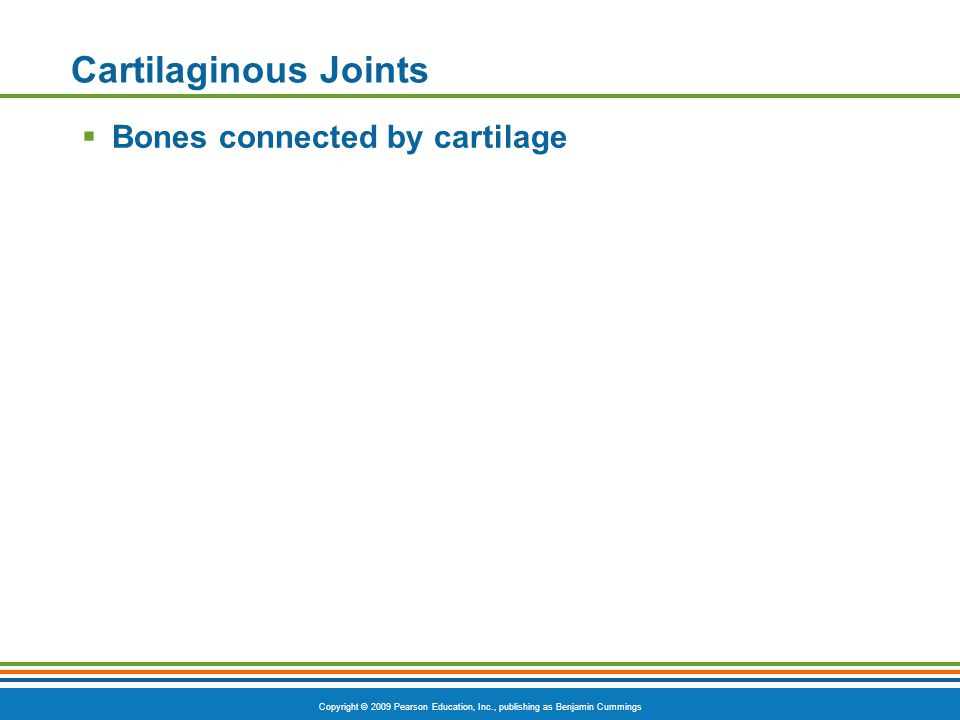 Copyright © 2009 Pearson Education, Inc., publishing as Benjamin Cummings Cartilaginous Joints  Bones connected by cartilage