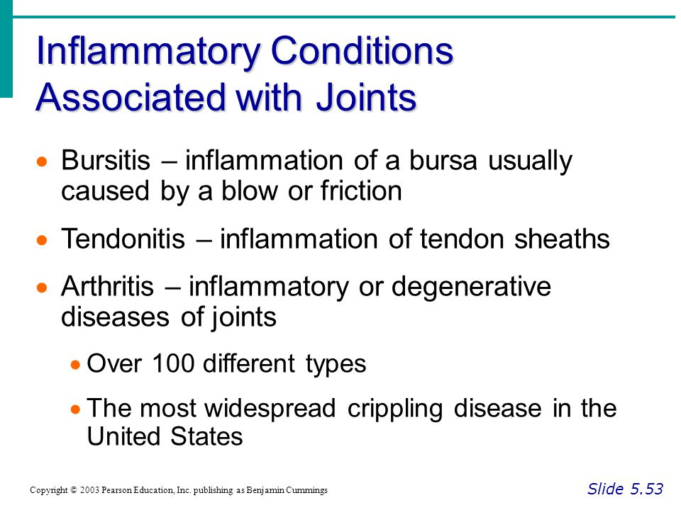 Inflammatory Conditions Associated with Joints Slide 5.53 Copyright © 2003 Pearson Education, Inc.