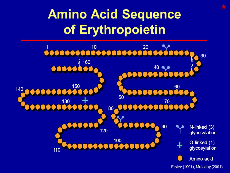 Amino Acid Sequence of Erythropoietin Erslev (1991); Mulcahy (2001) *