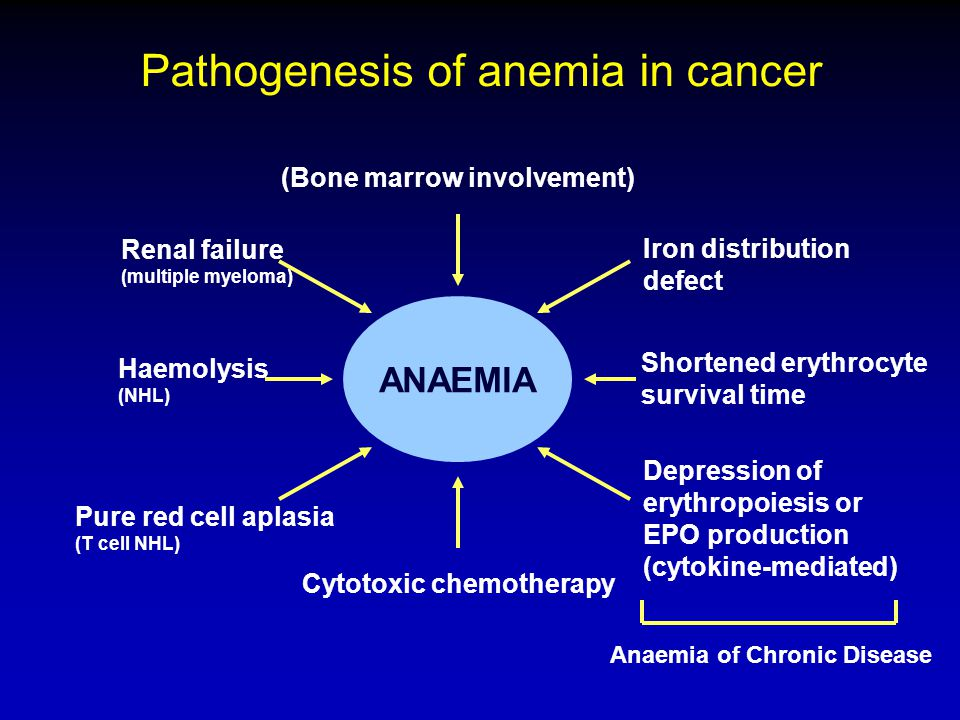 Pathogenesis of anemia in cancer ANAEMIA (Bone marrow involvement) Iron distribution defect Shortened erythrocyte survival time Depression of erythropoiesis or EPO production (cytokine-mediated) Cytotoxic chemotherapy Haemolysis (NHL) Renal failure (multiple myeloma) Pure red cell aplasia (T cell NHL) Anaemia of Chronic Disease