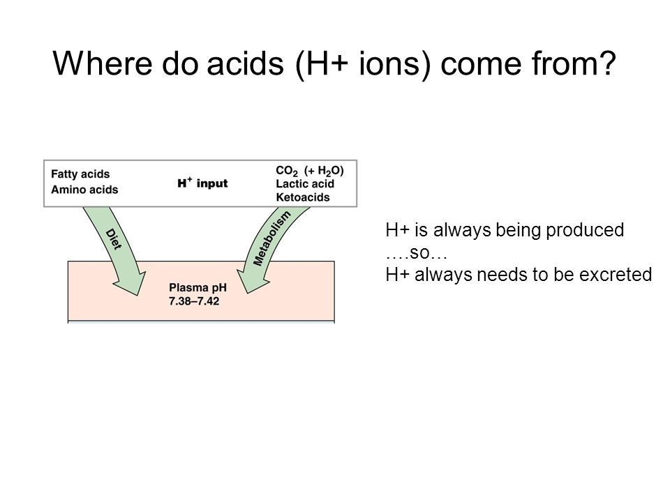 Where do acids (H+ ions) come from.
