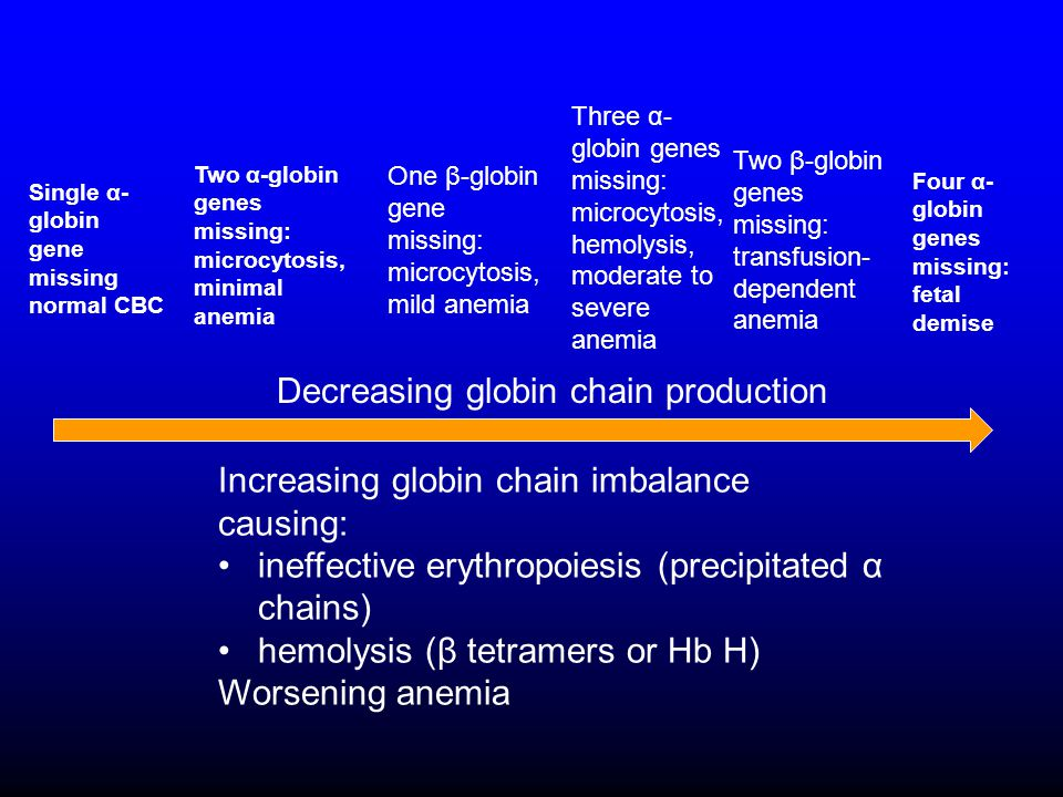 Decreasing globin chain production Increasing globin chain imbalance causing: ineffective erythropoiesis (precipitated α chains) hemolysis (β tetramers or Hb H) Worsening anemia Single α- globin gene missing normal CBC Two α-globin genes missing: microcytosis, minimal anemia One β-globin gene missing: microcytosis, mild anemia Three α- globin genes missing: microcytosis, hemolysis, moderate to severe anemia Two β-globin genes missing: transfusion- dependent anemia Four α- globin genes missing: fetal demise