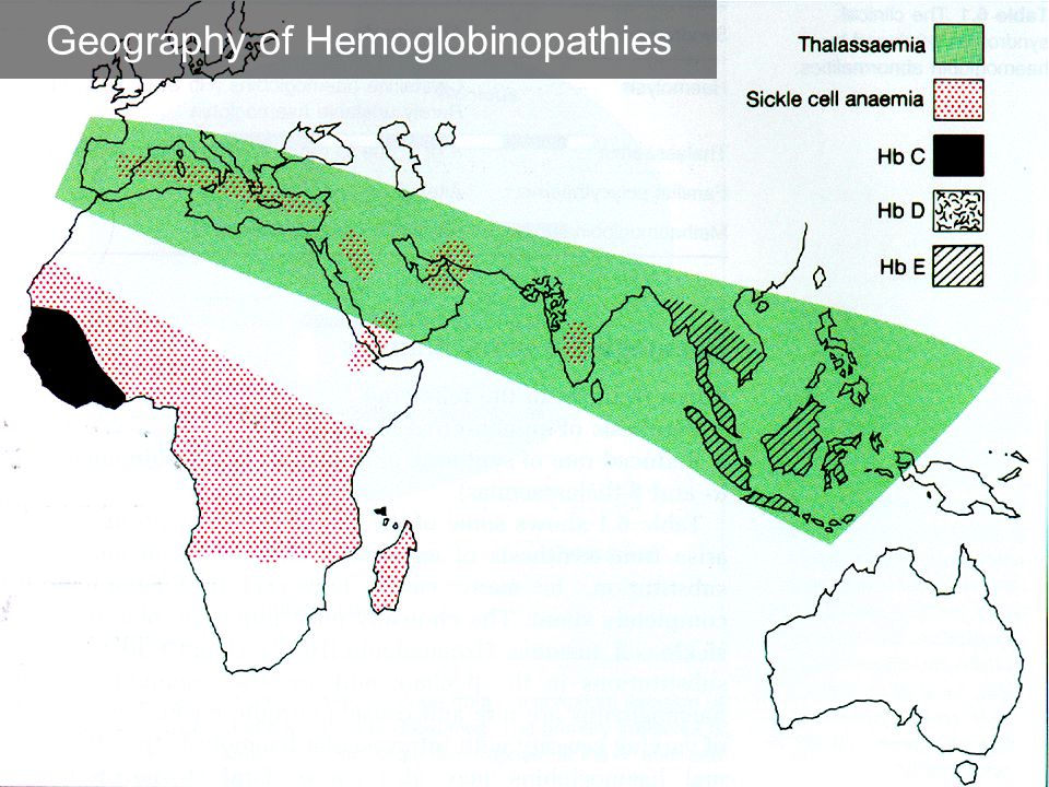 Geography of Hemoglobinopathies