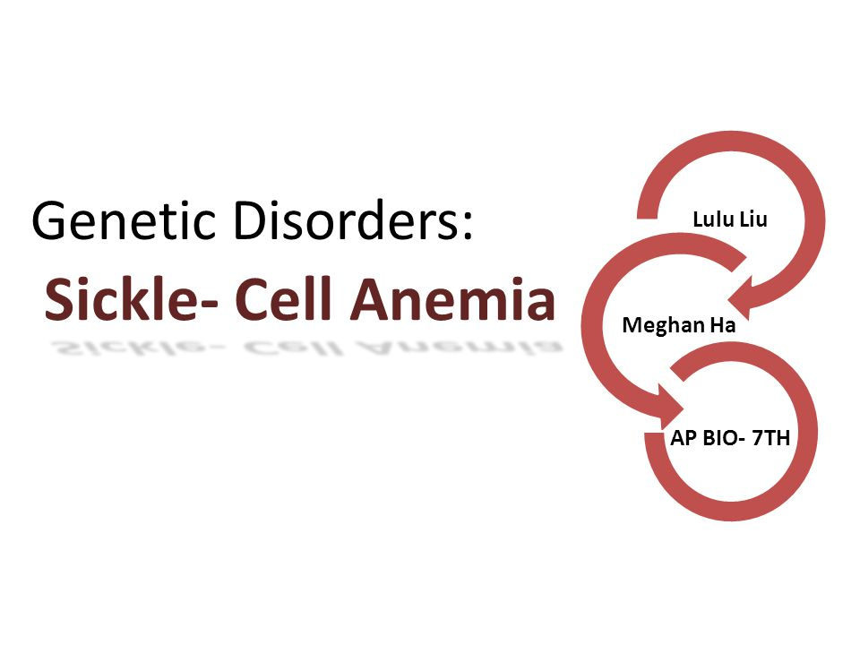 sickle cell anemia slide