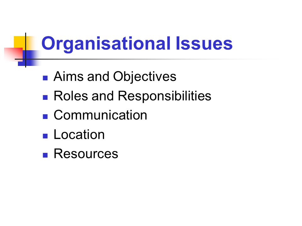 Organisational Issues Aims and Objectives Roles and Responsibilities Communication Location Resources