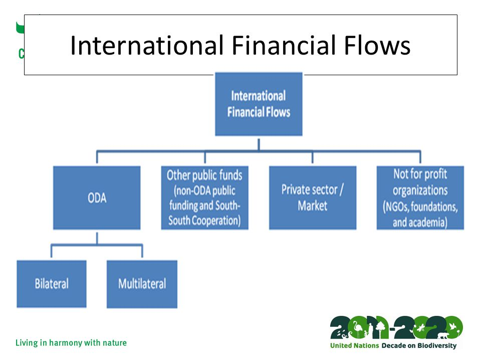 International Financial Flows