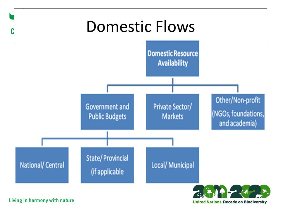 Domestic Flows