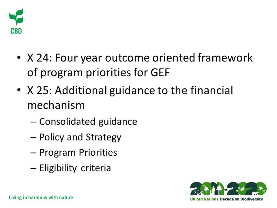 X 24: Four year outcome oriented framework of program priorities for GEF X 25: Additional guidance to the financial mechanism – Consolidated guidance – Policy and Strategy – Program Priorities – Eligibility criteria