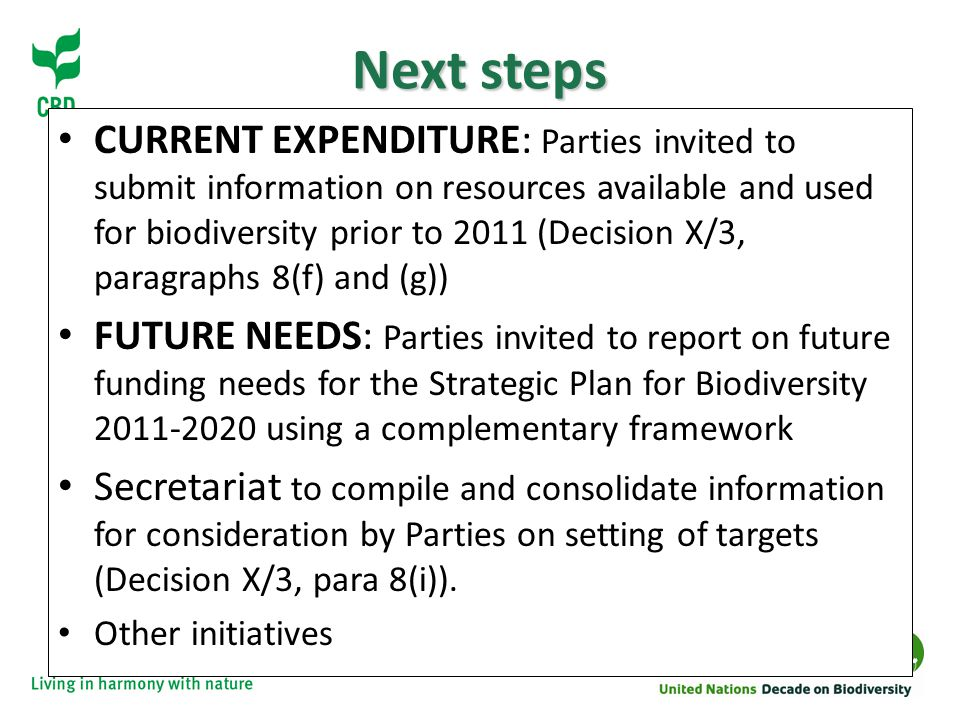 Next steps CURRENT EXPENDITURE: Parties invited to submit information on resources available and used for biodiversity prior to 2011 (Decision X/3, paragraphs 8(f) and (g)) FUTURE NEEDS: Parties invited to report on future funding needs for the Strategic Plan for Biodiversity using a complementary framework Secretariat to compile and consolidate information for consideration by Parties on setting of targets (Decision X/3, para 8(i)).