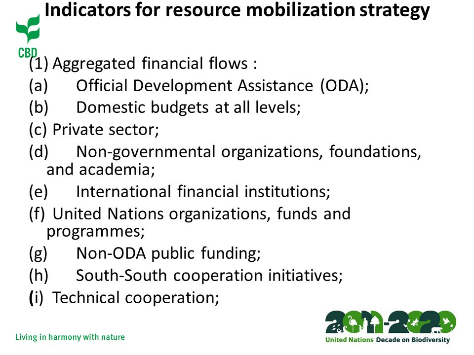 Indicators for resource mobilization strategy (1)Aggregated financial flows : (a) Official Development Assistance (ODA); (b) Domestic budgets at all levels; (c) Private sector; (d) Non-governmental organizations, foundations, and academia; (e) International financial institutions; (f) United Nations organizations, funds and programmes; (g) Non-ODA public funding; (h) South-South cooperation initiatives; (i) Technical cooperation;