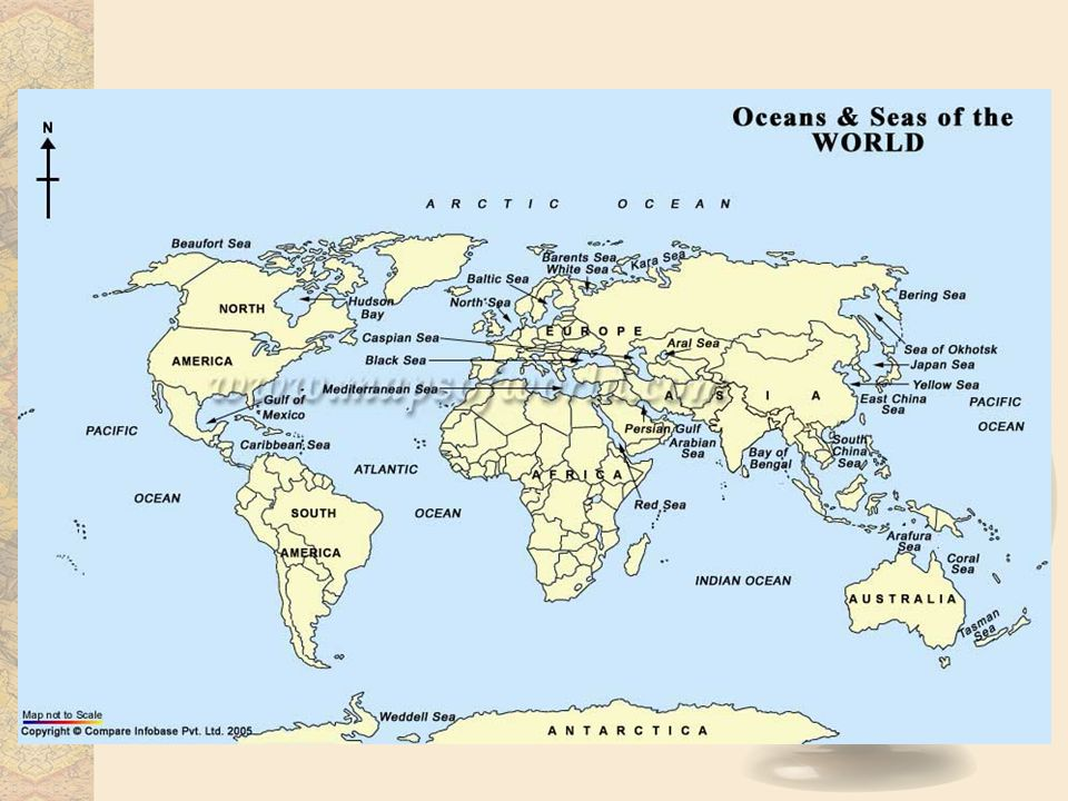 World biomes marine distribution the marine biome is the biggest 4 climate the earths climate does not actually affect the marine biome the water is warm as you get close to the equator and cold as you get closer to the gumiabroncs
