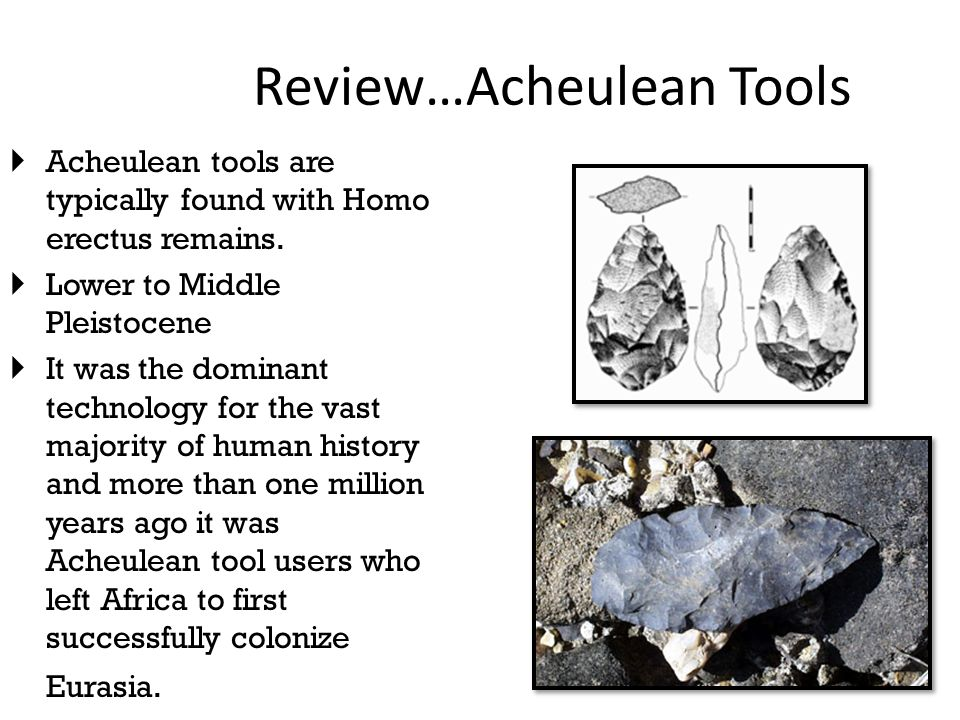 acheulean tool tradition