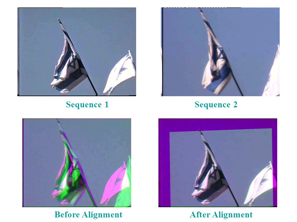 Sequence 1Sequence 2 Before AlignmentAfter Alignment