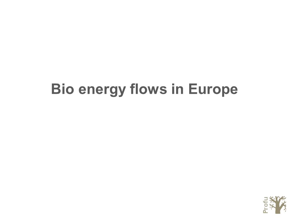 Bio energy flows in Europe