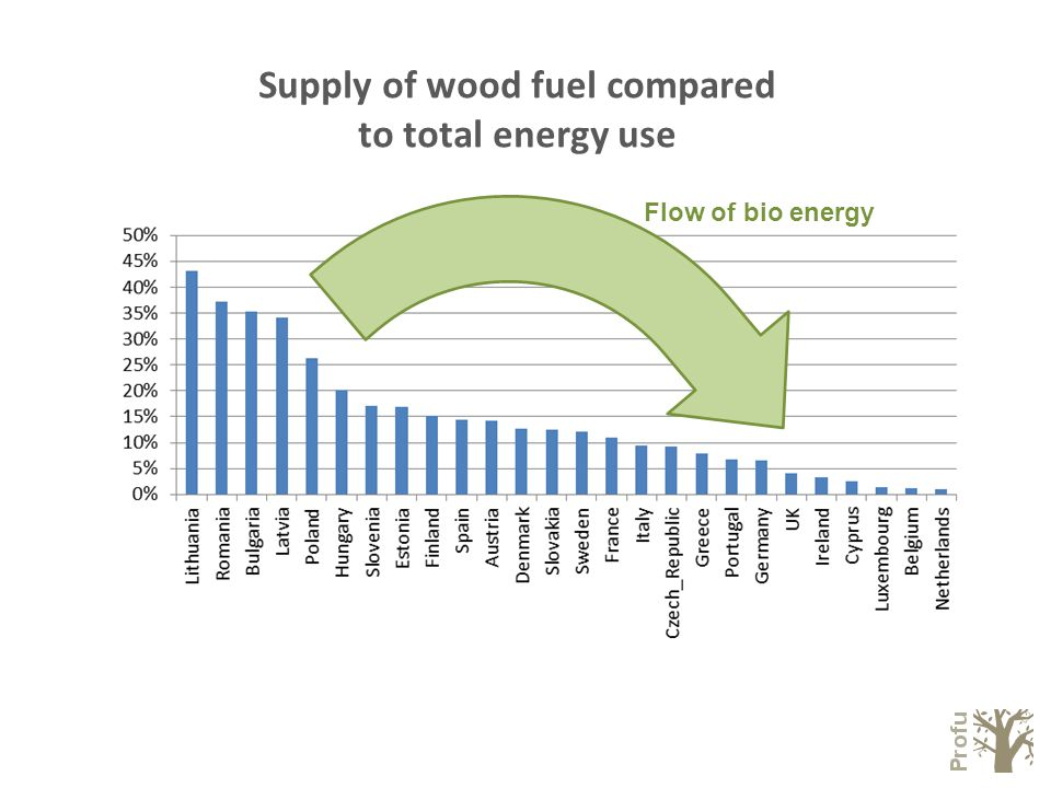 Supply of wood fuel compared to total energy use Flow of bio energy