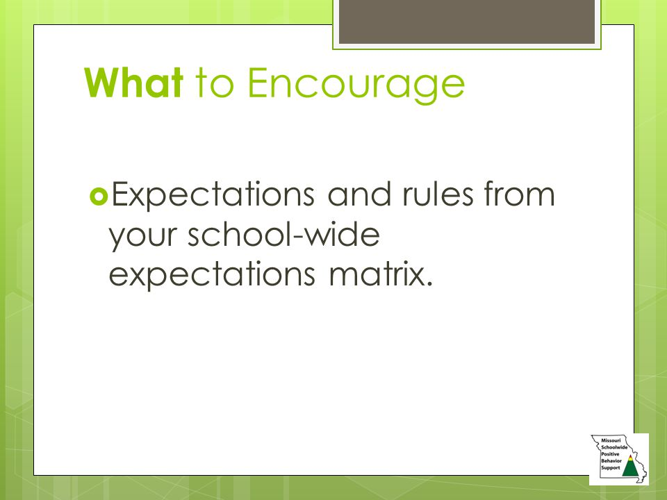 What to Encourage  Expectations and rules from your school-wide expectations matrix.