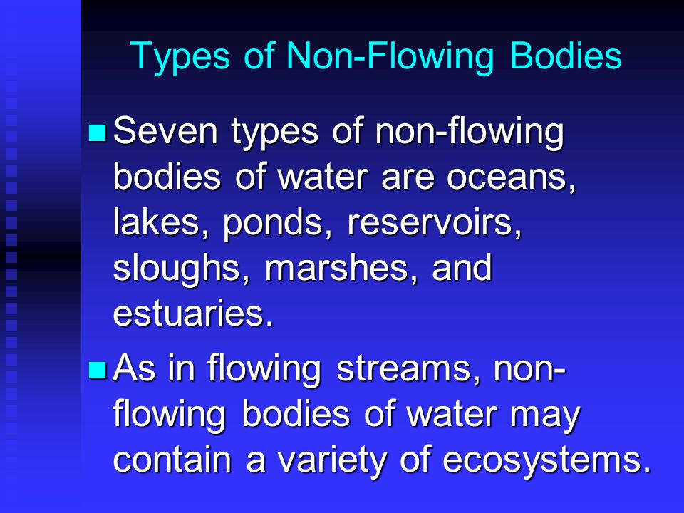 Types of Non-Flowing Bodies Seven types of non-flowing bodies of water are oceans, lakes, ponds, reservoirs, sloughs, marshes, and estuaries.