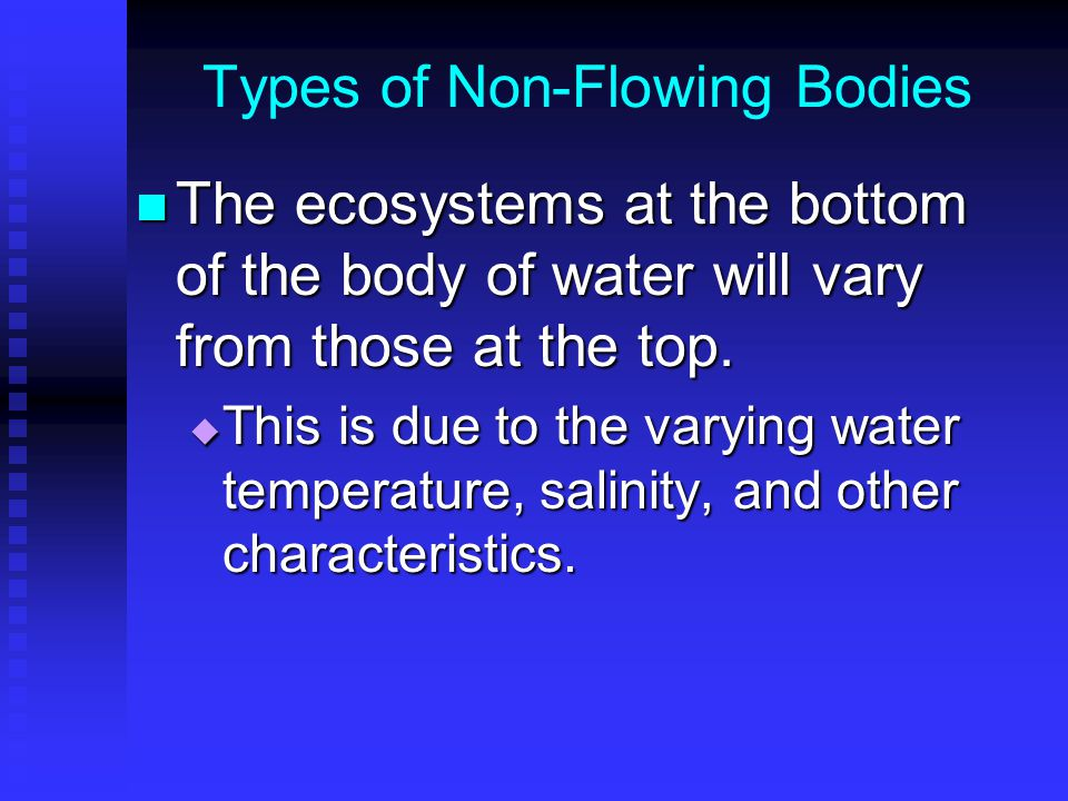 Types of Non-Flowing Bodies The ecosystems at the bottom of the body of water will vary from those at the top.