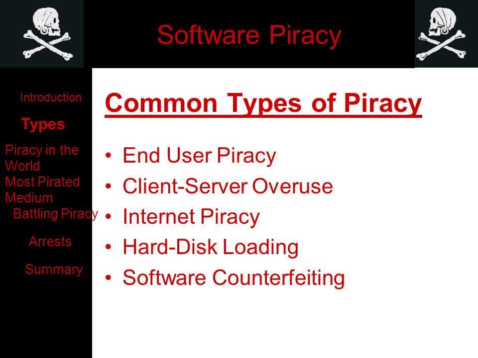types of software piracy