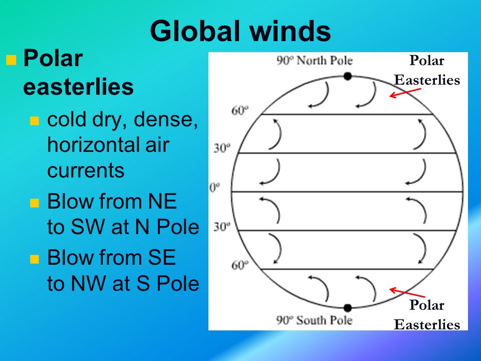 Global winds Polar easterlies cold dry, dense, horizontal air currents Blow from NE to SW at N Pole Blow from SE to NW at S Pole Polar Easterlies