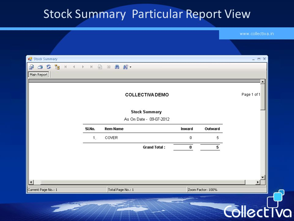 Stock Summary Particular Report View