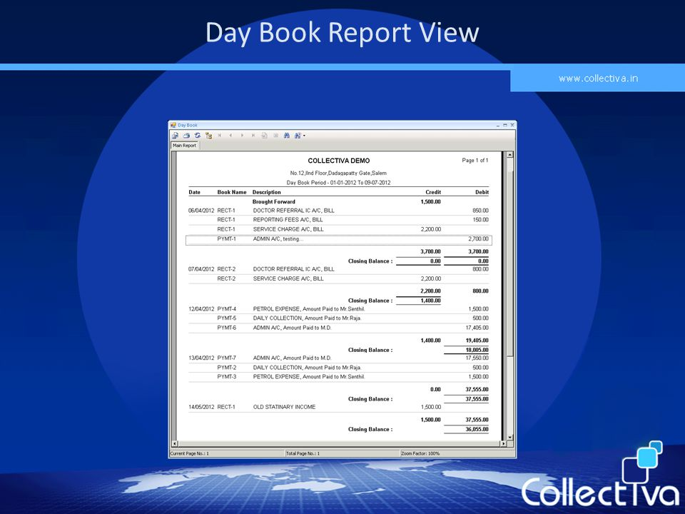 Day Book Report View