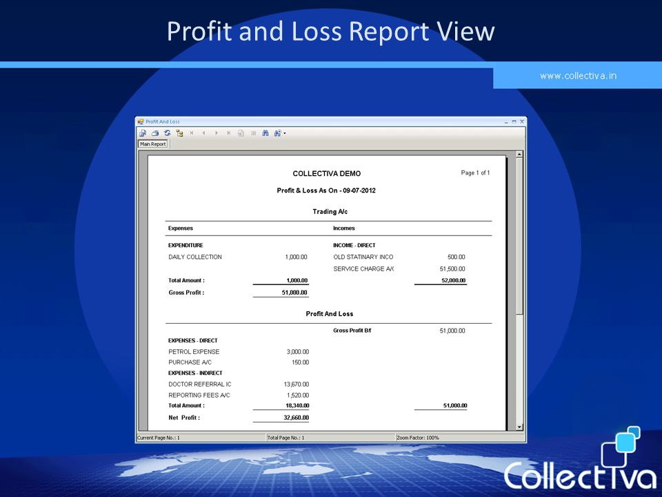 Profit and Loss Report View