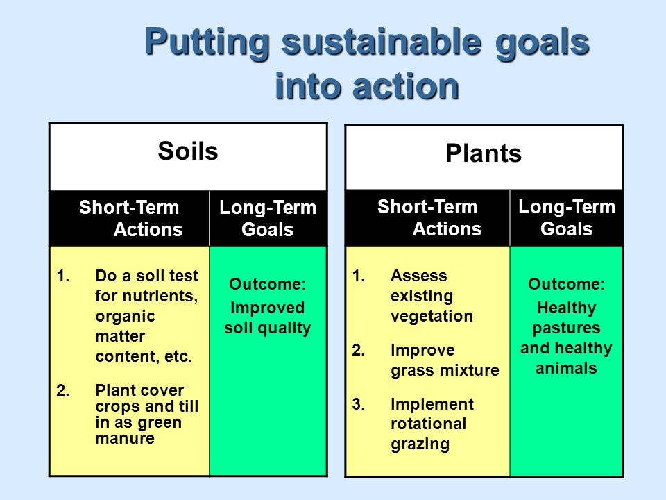 Putting sustainable goals into action Soils Short-Term Actions Long-Term Goals 1.Do a soil test for nutrients, organic matter content, etc.