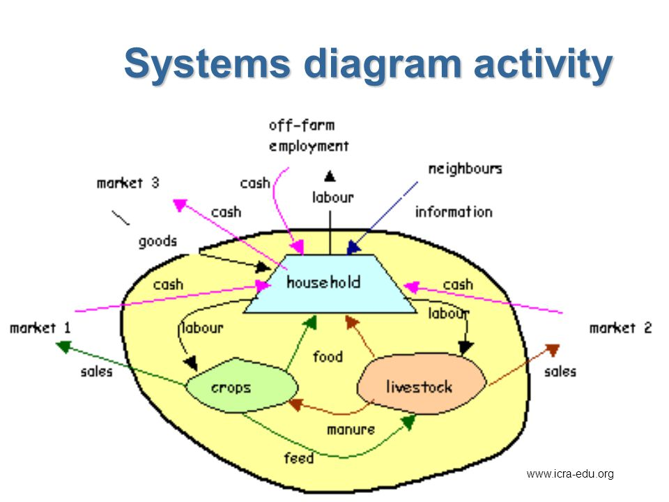 Systems diagram activity