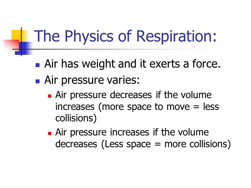 The Physics of Respiration: Air has weight and it exerts a force.