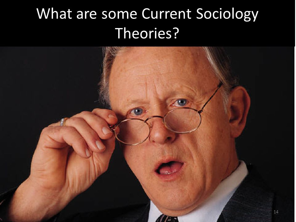 What are some Current Sociology Theories 14